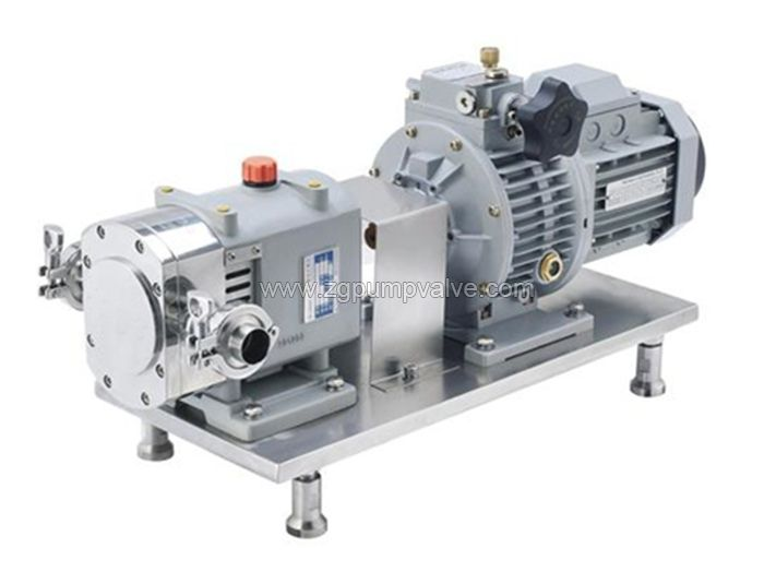 Stainless steel cam rotor pump