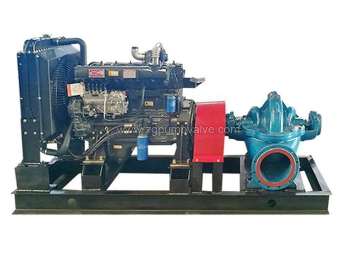 Diesel engine double suction pump