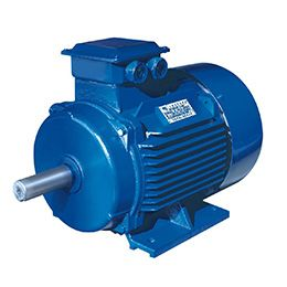 GS type sanitary screw pump
